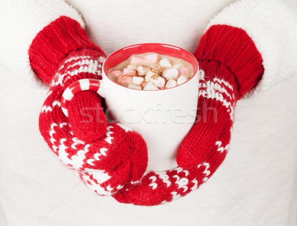 Vrouwelijke handen warme chocolademelk heemst vrouw Stockfoto © karandaev