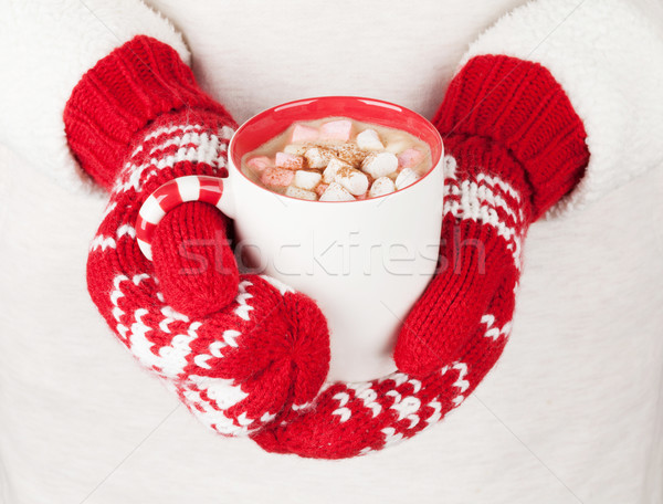 Femminile mani cioccolata calda marshmallow donna Foto d'archivio © karandaev