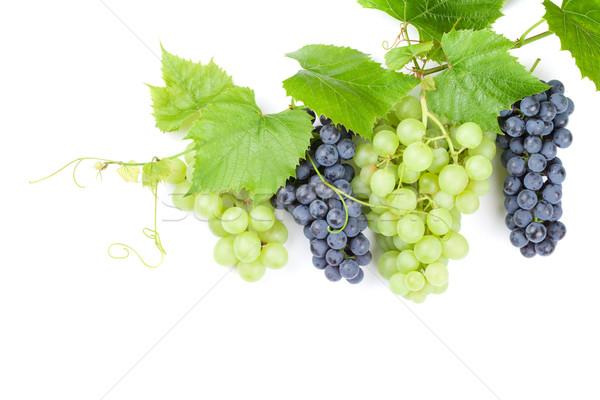 красный белый виноград листьев изолированный Сток-фото © karandaev