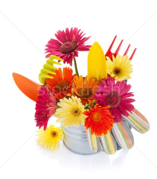 Photo stock: Coloré · fleurs · jardin · outils · isolé · blanche