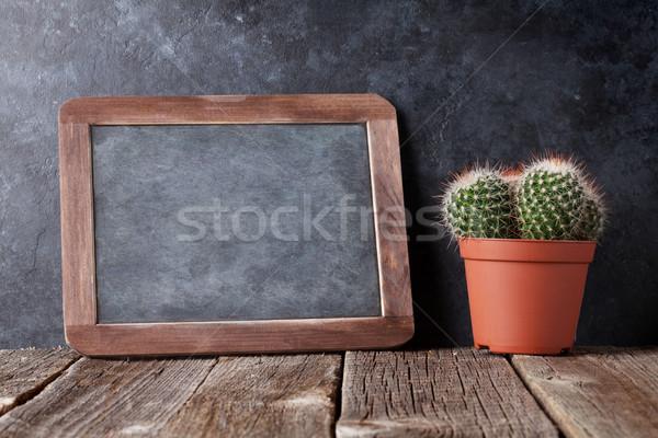 Kaktusz kréta tábla szöveg vissza az iskolába copy space Stock fotó © karandaev