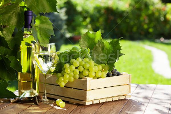 Garrafa de vinho branco vidro videira uvas monte jardim Foto stock © karandaev