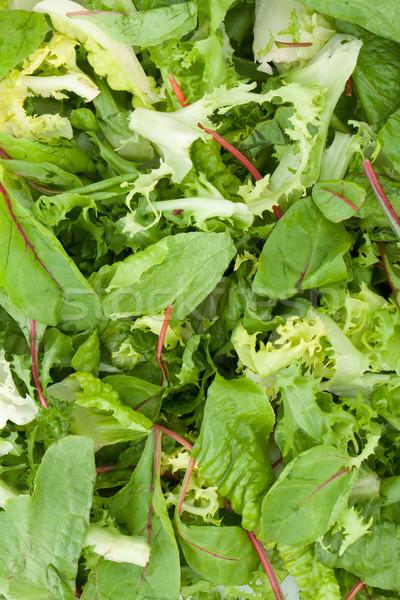 Healthy green salad closeup Stock photo © karandaev