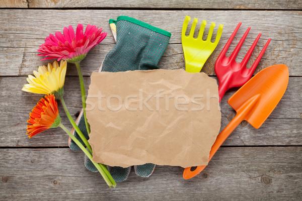 Kerti eszközök színes virágok papír copy space fa asztal Stock fotó © karandaev