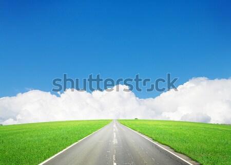 Aszfalt út zöld mező kék ég nyár Stock fotó © karandaev