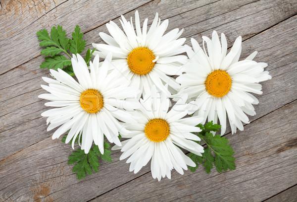 Zdjęcia stock: Daisy · rumianek · kwiaty · drewniany · stół · tle