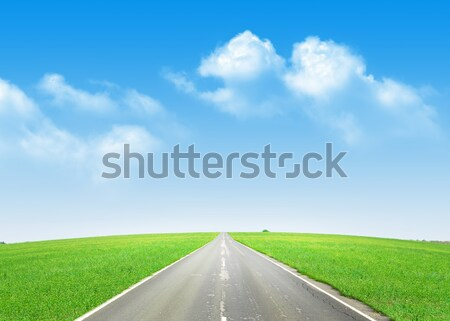 Asphalte route vert domaine ciel bleu été Photo stock © karandaev
