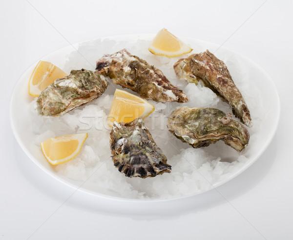 Oyster with lemon Stock photo © karandaev