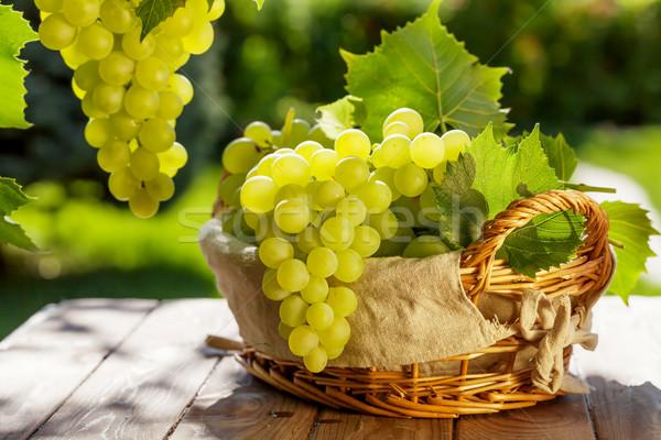 белый виноград корзины саду таблице продовольствие Сток-фото © karandaev