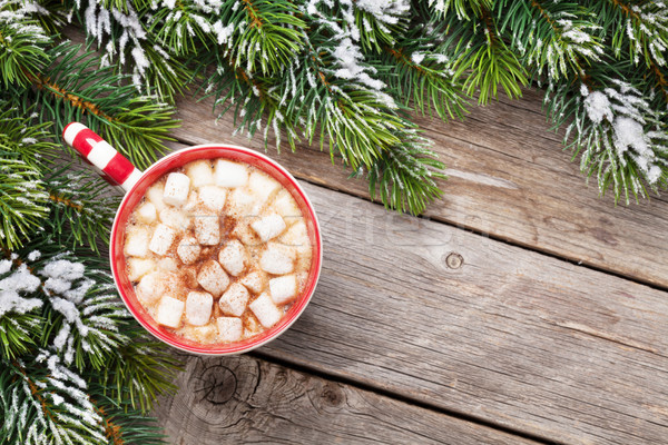 Noel sıcak çikolata hatmi üst görmek Stok fotoğraf © karandaev