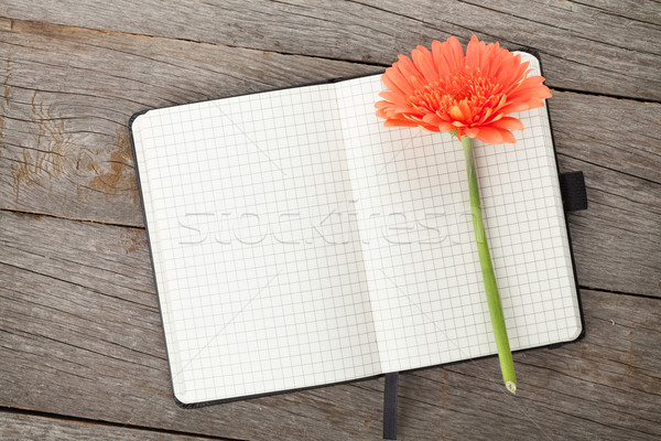 Blank notepad and orange gerbera flower Stock photo © karandaev