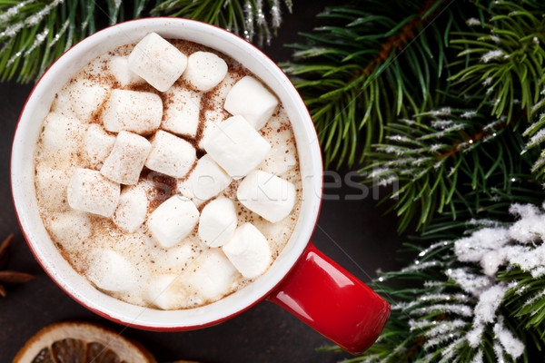 Christmas fir tree and hot chocolate with marshmallow Stock photo © karandaev