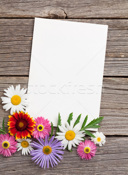 Blank greeting card and flowers Stock photo © karandaev
