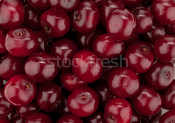 Fresh ripe cherries pattern Stock photo © karandaev