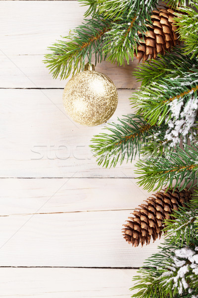 Рождества сосна древесины копия пространства аннотация Сток-фото © karandaev