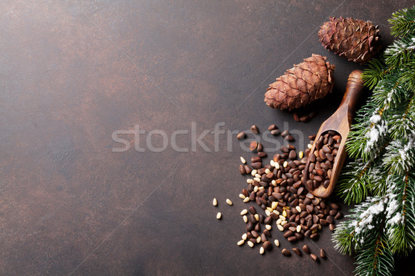 Pine nuts on stone table Stock photo © karandaev