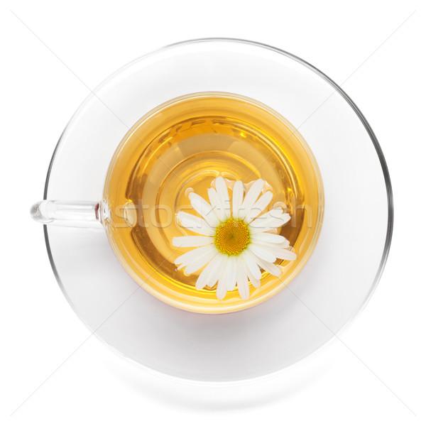 Fincan çay çiçek yalıtılmış Stok fotoğraf © karandaev
