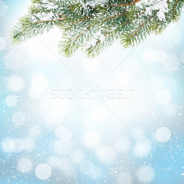 Christmas winter background with snow fir tree Stock photo © karandaev