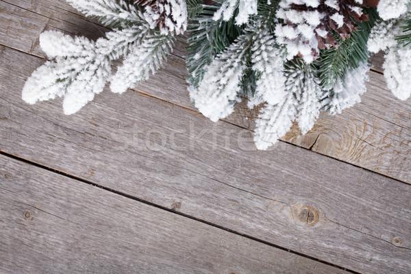 Fenyőfa fa deszka fedett hó fa fa Stock fotó © karandaev