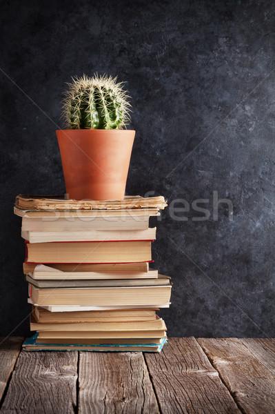 Foto stock: Livros · cacto · sala · de · aula · giz · conselho · de · volta · à · escola