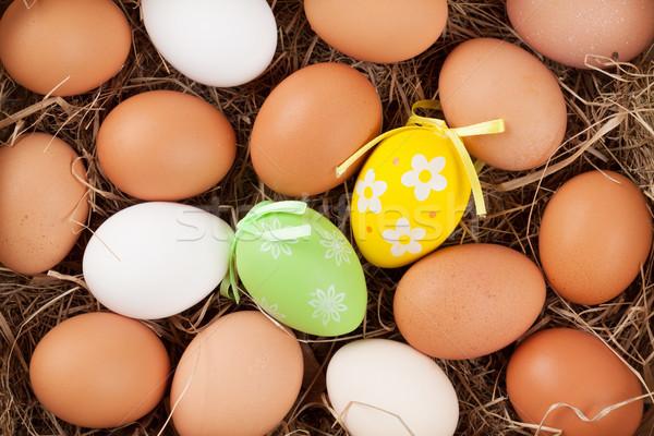 Easter eggs paglia nido top view Pasqua Foto d'archivio © karandaev