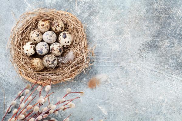 яйца гнезда киска ива Пасха Сток-фото © karandaev