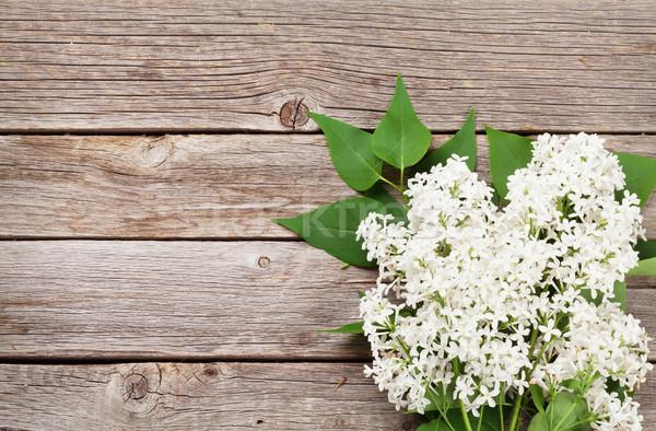 Stock fotó: Fehér · orgona · virágok · fából · készült · felső · kilátás