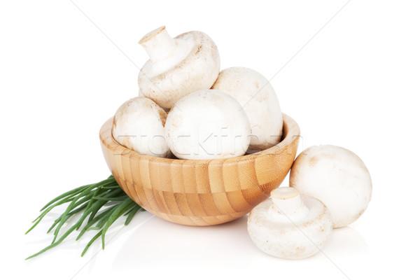 çanak champignon mantar yeşil soğan yalıtılmış beyaz Stok fotoğraf © karandaev