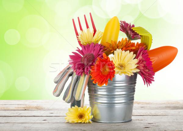 Photo stock: Coloré · fleurs · jardin · outils · table · en · bois · ensoleillée