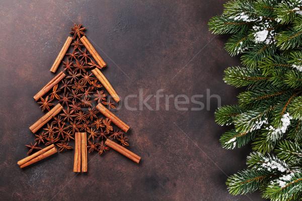 Anis canela árvore temperos árvore de natal Foto stock © karandaev