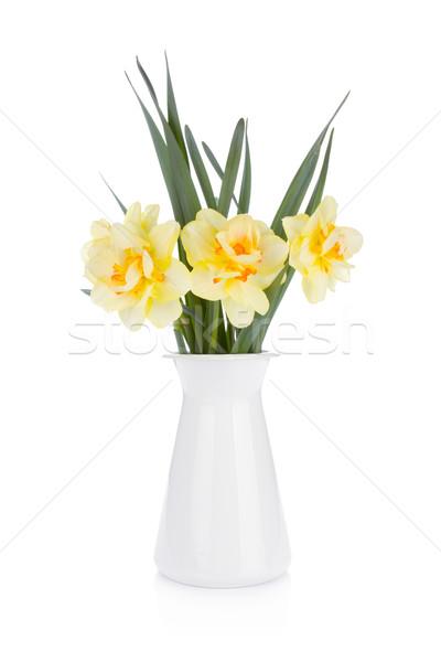 Virágcsokor citromsárga nárciszok virágcserép izolált fehér Stock fotó © karandaev