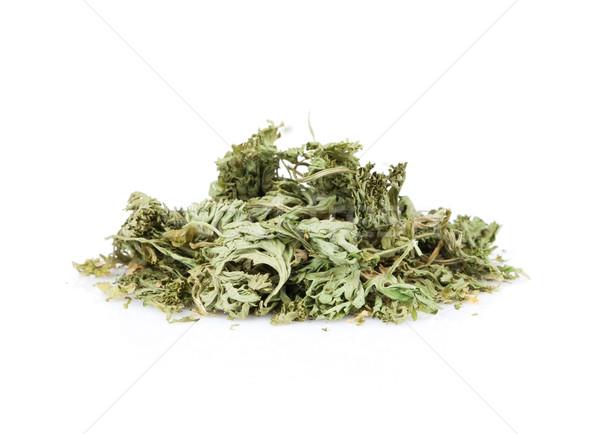 Dry parsley Stock photo © karandaev