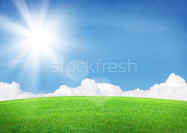 Yeşil ot alan mavi gökyüzü güneş bulutlar parlak Stok fotoğraf © karandaev