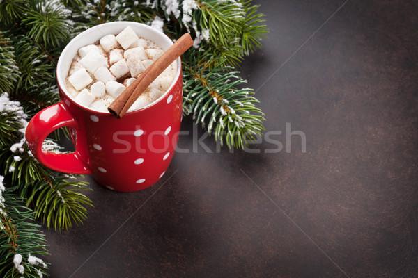 Stock fotó: Karácsonyfa · forró · csokoládé · mályvacukor · karácsony · fenyőfa · kilátás