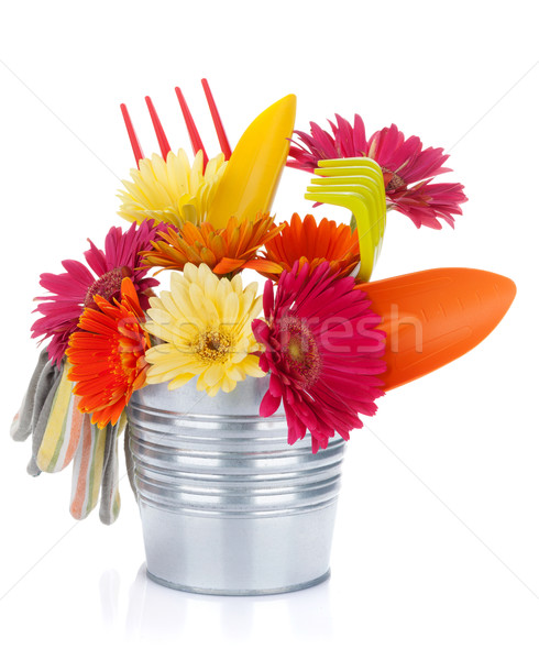 Colorful flowers and garden tools Stock photo © karandaev