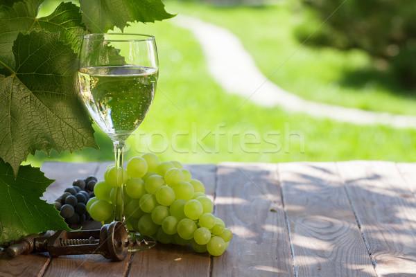 Beyaz şarap cam beyaz üzüm bahçe tablo Stok fotoğraf © karandaev