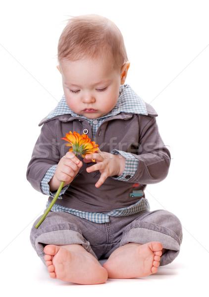 Small baby and orange flower Stock photo © karandaev