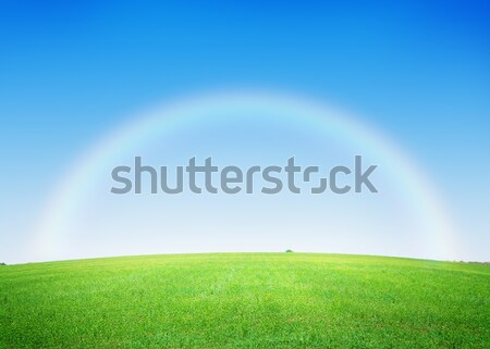 Yeşil ot alan derin mavi gökyüzü gökkuşağı ağaç Stok fotoğraf © karandaev