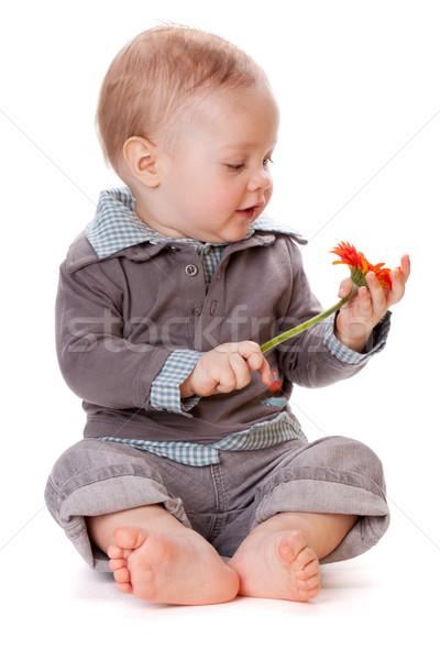 Smiling baby and flower Stock photo © karandaev