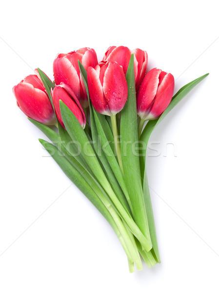 Rosso tulipano fiori bouquet san valentino biglietto d'auguri Foto d'archivio © karandaev