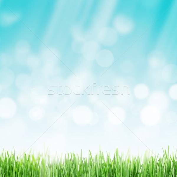 Abstract sunny spring background Stock photo © karandaev