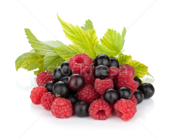 Black currant and raspberry Stock photo © karandaev