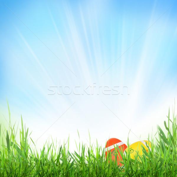 Húsvét napos tavasz tojások fű textúra Stock fotó © karandaev
