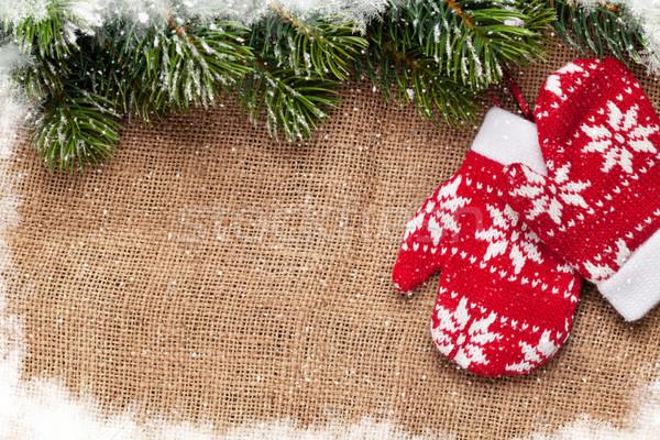Natale muffole neve tela ruvida Foto d'archivio © karandaev