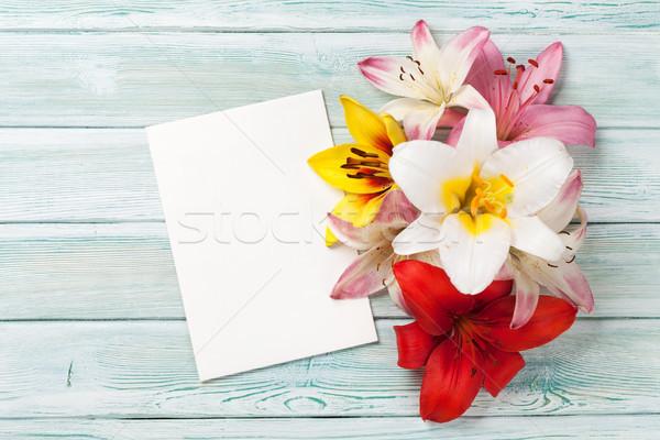 Colorido Lily flores tarjeta de felicitación espacio Foto stock © karandaev