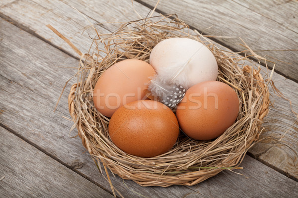 Eggs nest Stock photo © karandaev
