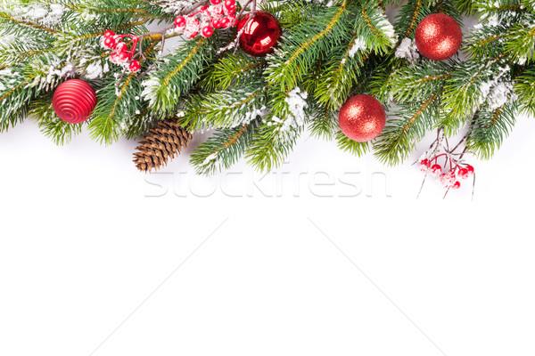 Сток-фото: рождественская · елка · филиала · снега · изолированный · белый · копия · пространства