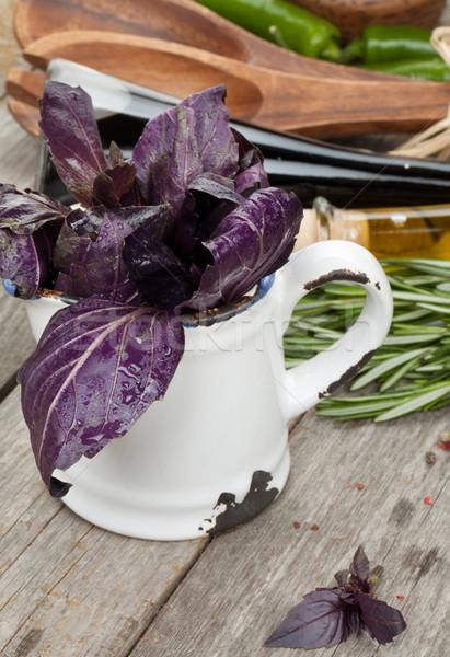 Friss ibolya bazsalikom fűszer fűszer zöld Stock fotó © karandaev