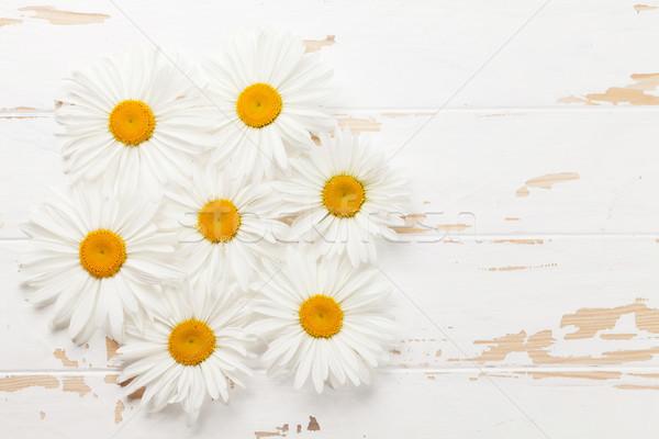 саду ромашка цветы Top мнение Сток-фото © karandaev
