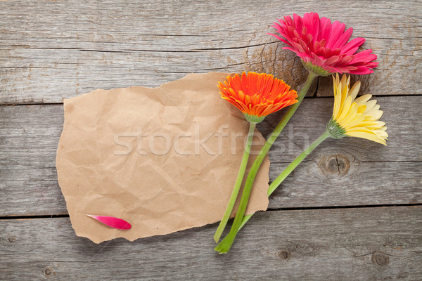 Three colorful gerbera flowers with paper for copy space Stock photo © karandaev